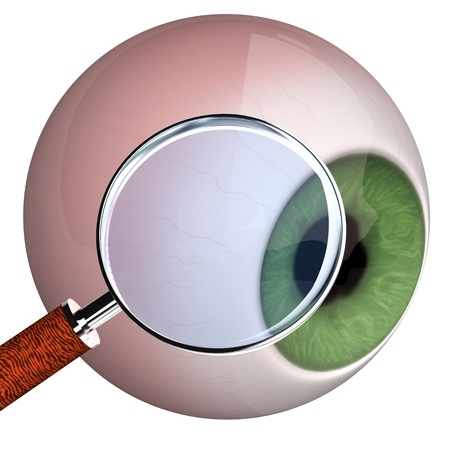 retinal: Eye with loupe on the white background