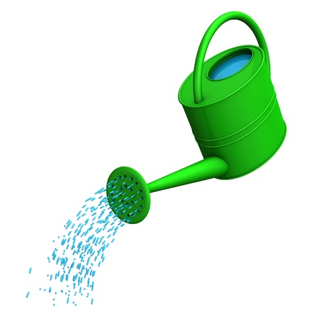 watering garden: Green watering can on the white background.