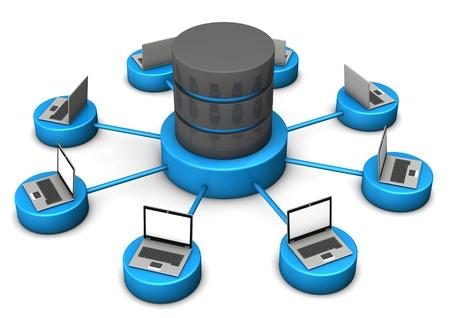 database server: Laptops connected with database on the white background. Stock Photo