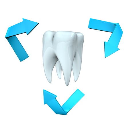 White tooth with blue arrows on the white background  photo