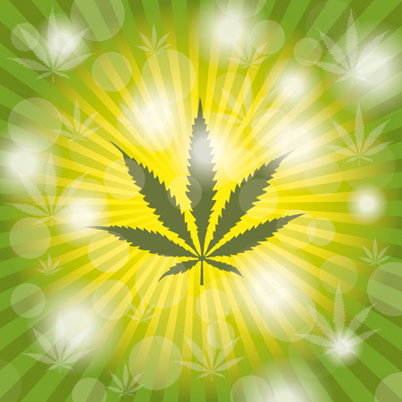 cannabis sativa: Cannabis sativa leave with lights. Eps 10 vector file.