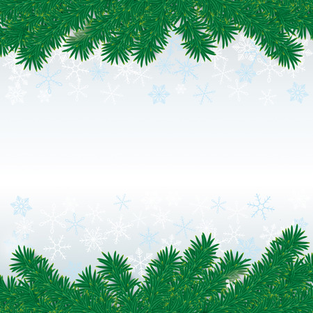 Snow with fir branches on white grey background.  Vector