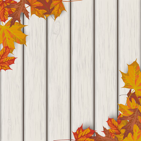 acer: Autumn background with foliage and wood.