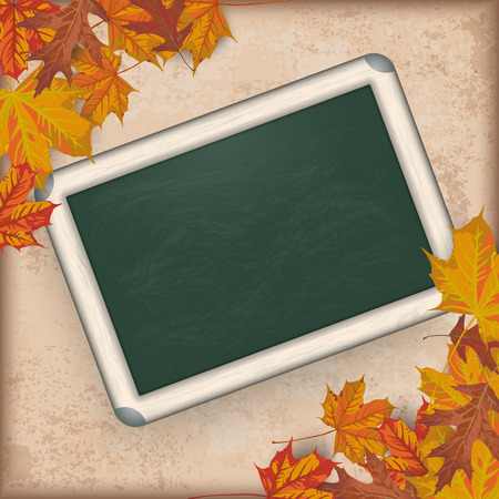 acer: Autumn vintage background with foliage and green blackboard.