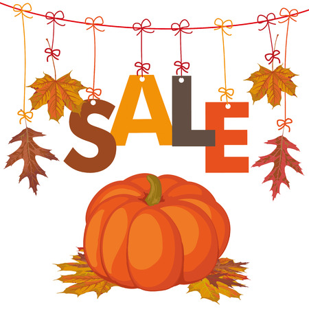 cucurbit: Foliage with text Sale and pumpkin on the white background. Eps 10 vector file. Illustration