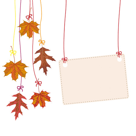 acer: Hanging autumn foliage with banner Eps 10 vector file. Illustration