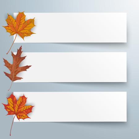 3 paper banners with foliage on the white background. Eps 10 vector file.