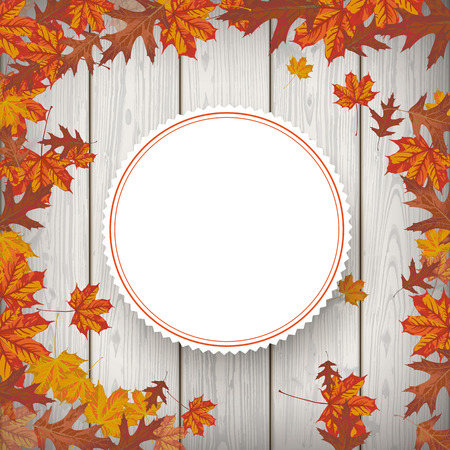 acer: Autumn flyer design with maple foliage. Eps 10 vector file.