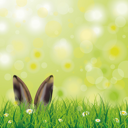 White flowers in grass with hare ears on the bokeh background. Illustration