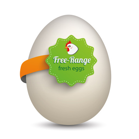 onlineshop: Egg with label and text Free-Range Fresh Eggs. Eps 10 vector file.