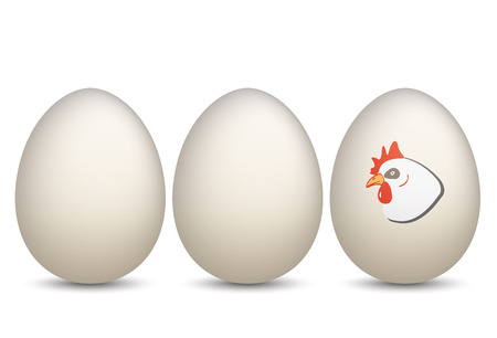 onlineshop: 3 natural eggs with chicken. Eps 10 vector file.