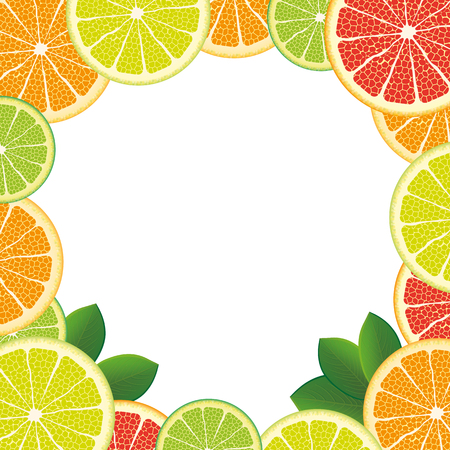 limon: Citrus fruits with foliage on the white. vector file. Illustration