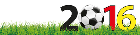 grasslands: Classic football in grass with text 2016 on the white background. vector file.