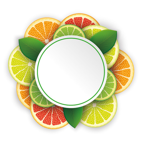 limon: Circle banner with citrus fruits on the white. vector file. Illustration