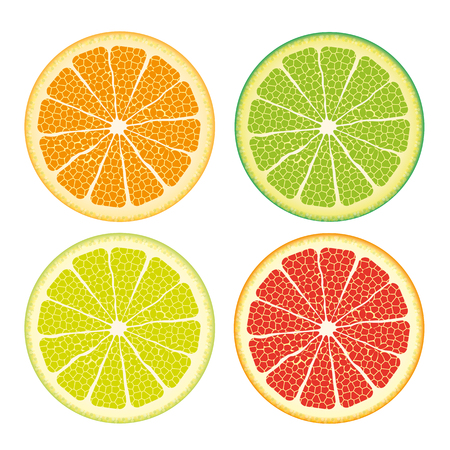 mandarins: Kinds of citrus fruits on the white background. vector file.