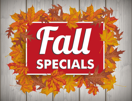 specials: Board with foliage and text Fall Specials. vector file.