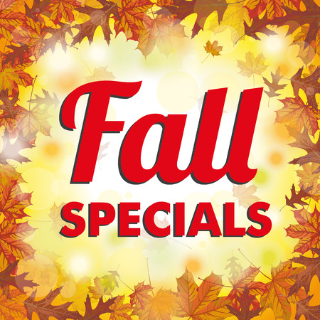 specials: Fall specials, foliage with bokeh lights. vector file. Illustration