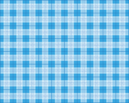 Blue checked picnic blanket background. vector file. Illustration