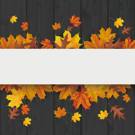 Black wood laths background with foliage and white banner. vector file.