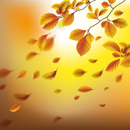 Autumn flyer design with beech tree foliage. Eps 10 vector file.