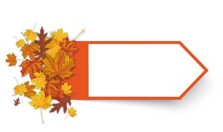 Autumn foliage with orange arrow on the white. Eps 10 vector file. Illustration