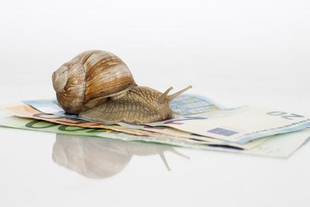 유로 노트와 흰색 배경 가진 로마 달팽이입니다.