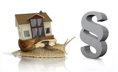 흰색 배경에 살아있는 집과 회색 단락과 로마 달팽이. 스톡 콘텐츠
