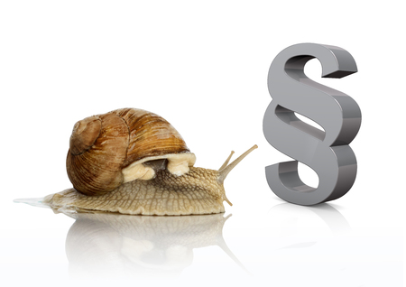 Roman snail with gray paragraph on the white background. Stock Photo