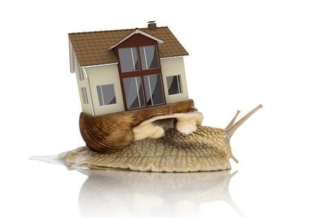 흰색 배경에 리빙 하우스와 로마 달팽이. 3D 그림으로 작성.