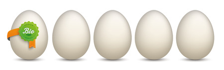onlineshop: 5 Eggs with green Bio Label on the white background. Eps 10 vector file.