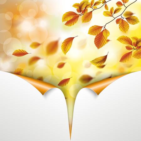 Herfst flyer ontwerp met beuken boom loof en gerolde hoeken Stock Illustratie