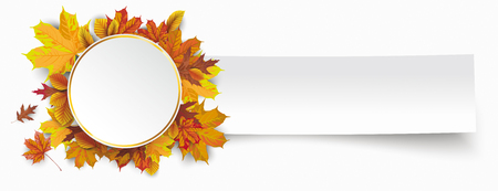 onlineshop: Autumn foliage with golden circle and white paper banner. Eps 10 vector file.
