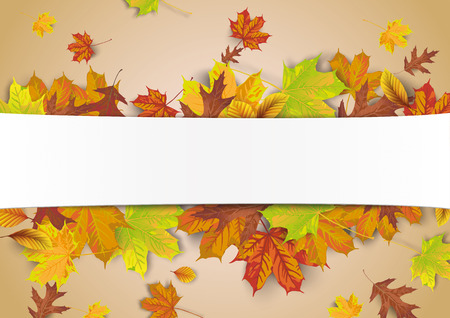 White paper banner with autumn foliage.  Eps 10 vector file.