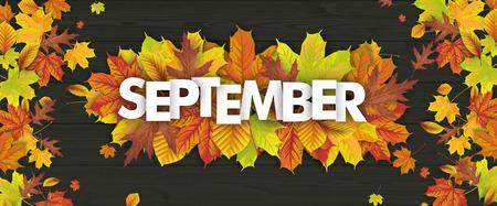 Feuillage d'automne sur le fond en bois, avec texte septembre. Fichier vectoriel EPS 10 Banque d'images - 86222642