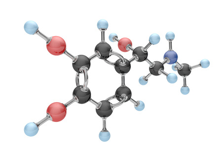 Molecule of adrenaline on the white background. 3d illustration.