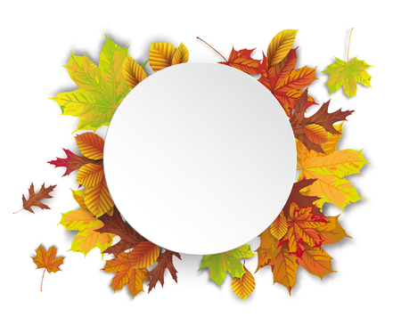 White paper circle with autumn foliage. Eps 10 vector file. Illustration