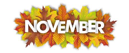 Autumn foliage on the white background, with text November.