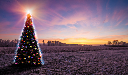 Frozen landscape with christmas tree with colored baubles.  Stock Photo