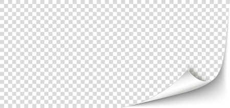 White scrolled corner banner with checked background.