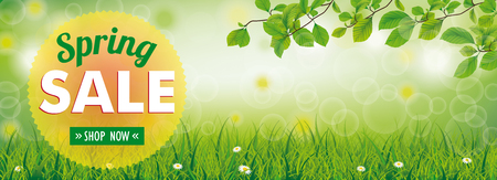 Spring banner with nature and text Spring Sale