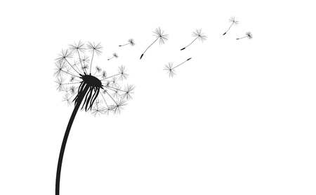 Dandelion silhouette on the white. Eps 10 vector file. Иллюстрация