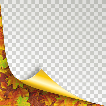 Convert paper cover with with autumn foliage. Eps 10 vector file.