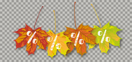 Autumn maple leaves with white percents on the checked background. Eps 10 vector file.