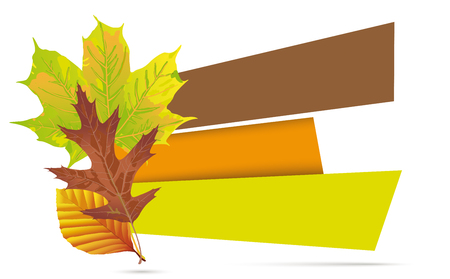 Autumn foliage with paper banners on the white. Eps 10 vector file.