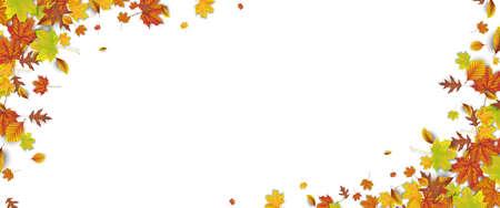 Autumn foliage on the white background. Eps 10 vector file. Illustration