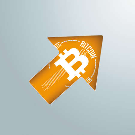 Bitcoin is becoming more and more valuable. Vettoriali