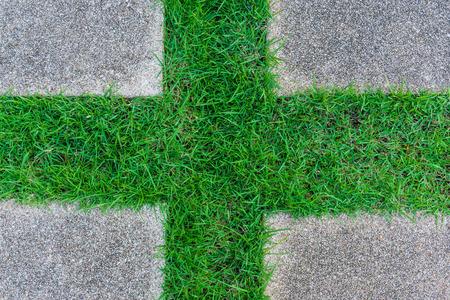 granite floor: Cross shape green grass with granite floor
