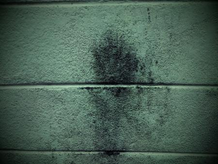 verdunkeln: Eine Wand von meinem Haus verdunkeln