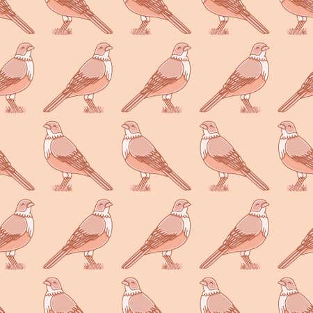 songbird vector repeat pattern. Rufous bellied thrush seamless illustration background. 向量圖像