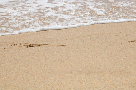 The footprints of the beach